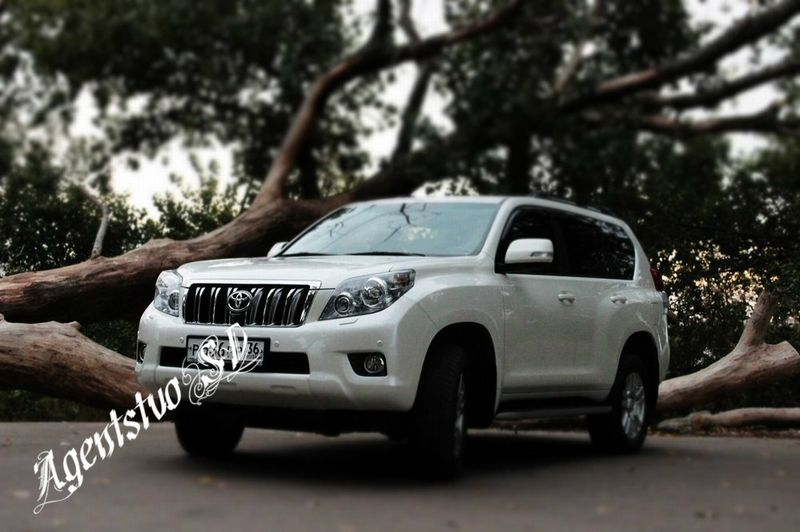 Toyota Land Cruiser Prado – 1500 руб./час