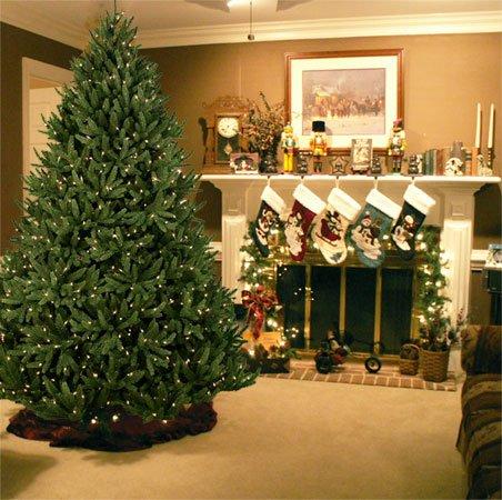 Как выбрать искусственную елку для дома на Новый год картинки